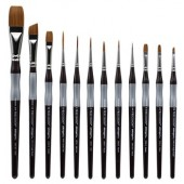 12 Piece Precision Brush Set